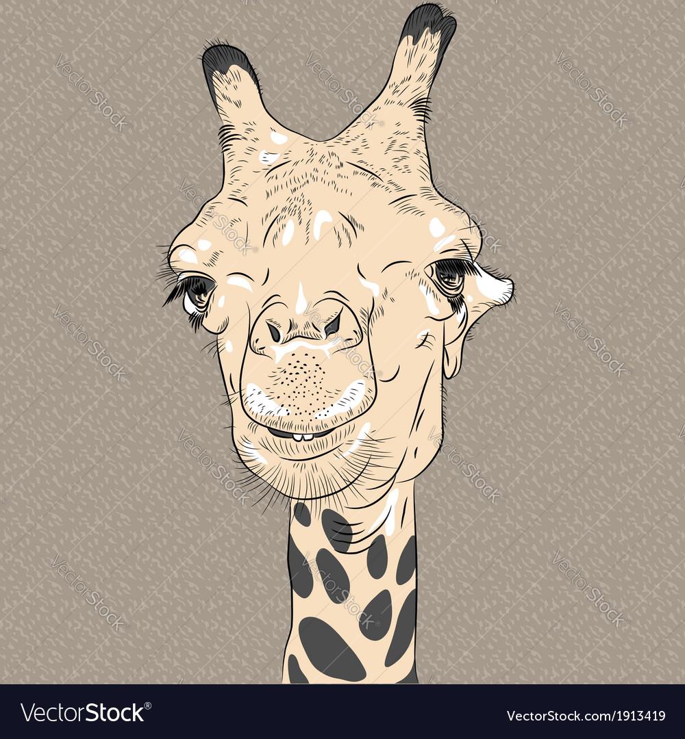 Sketch closeup portrait of funny giraffe vector | Price: 1 Credit (USD $1)