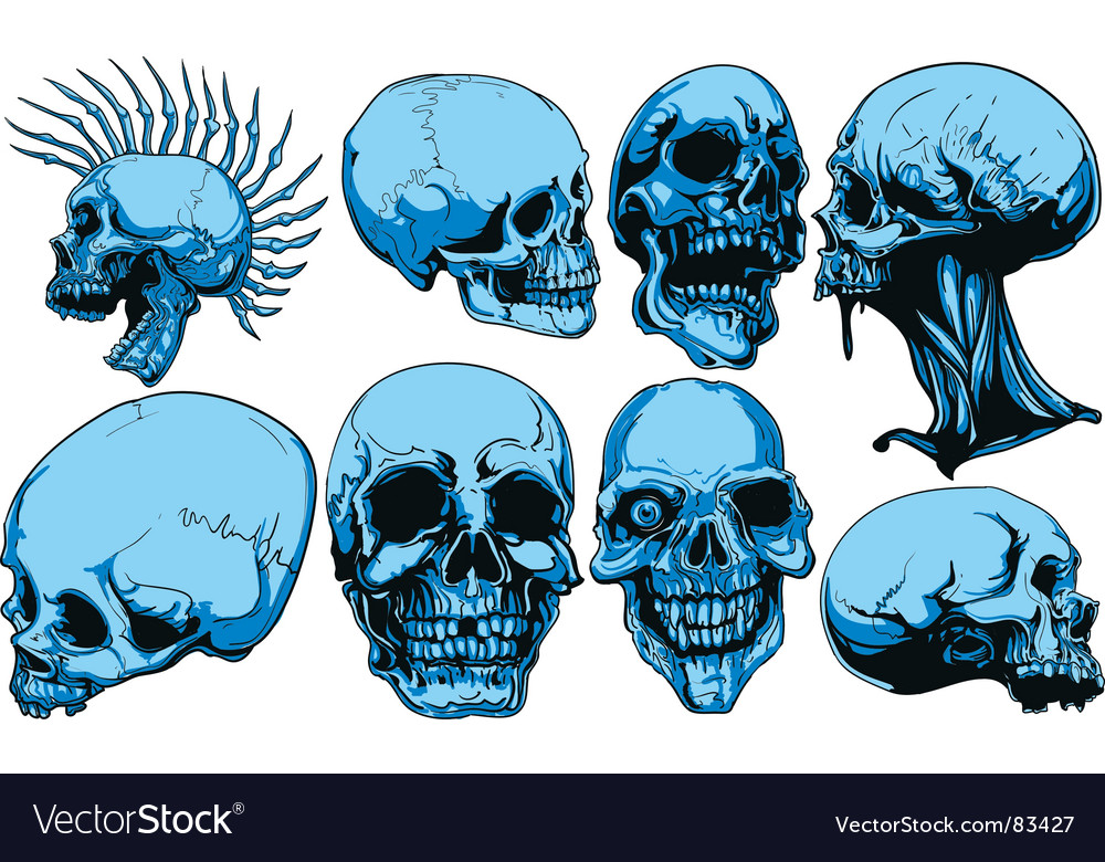 Skull set vector | Price: 3 Credit (USD $3)