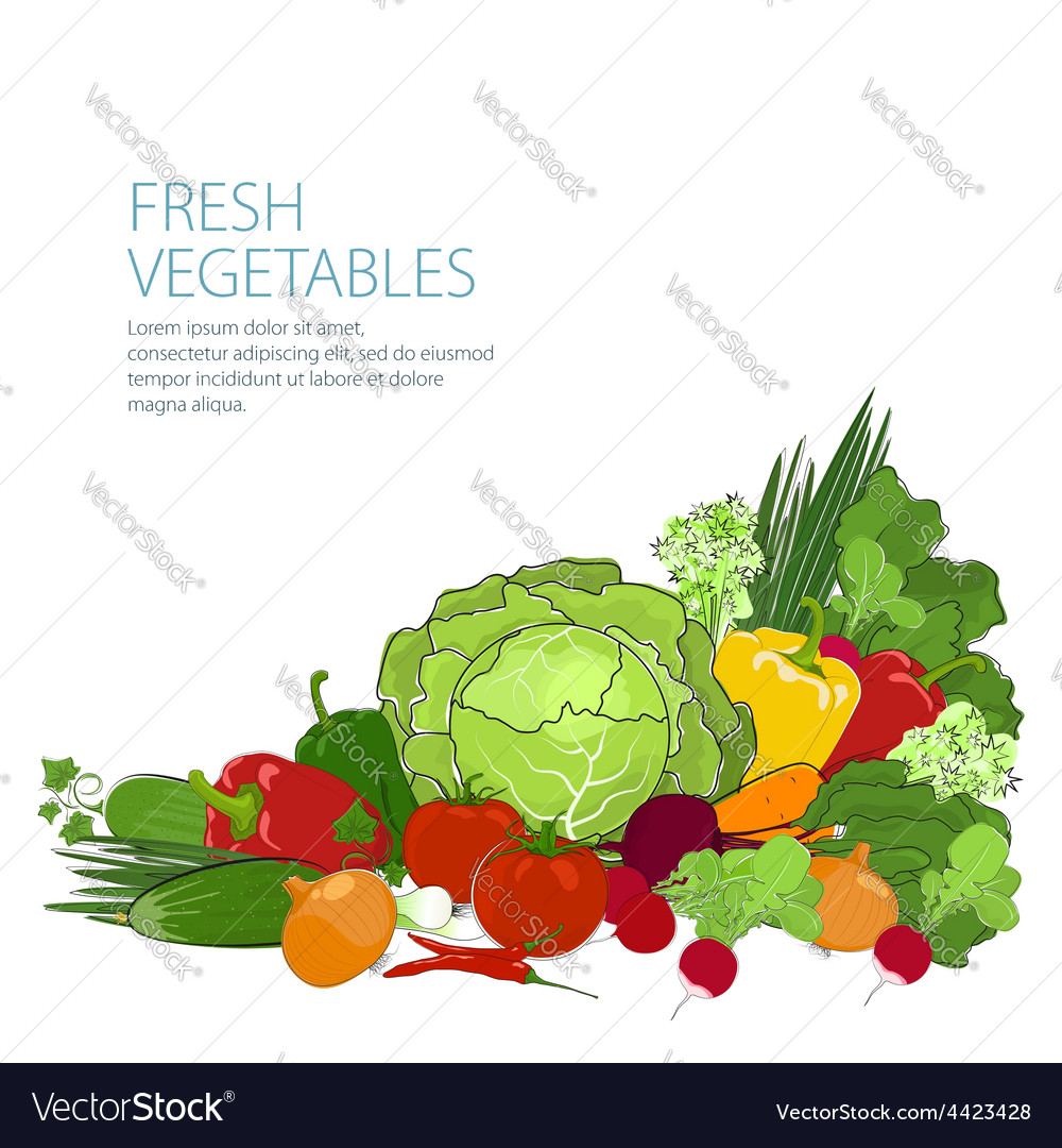 Healthy food fresh raw vegetables vector | Price: 1 Credit (USD $1)