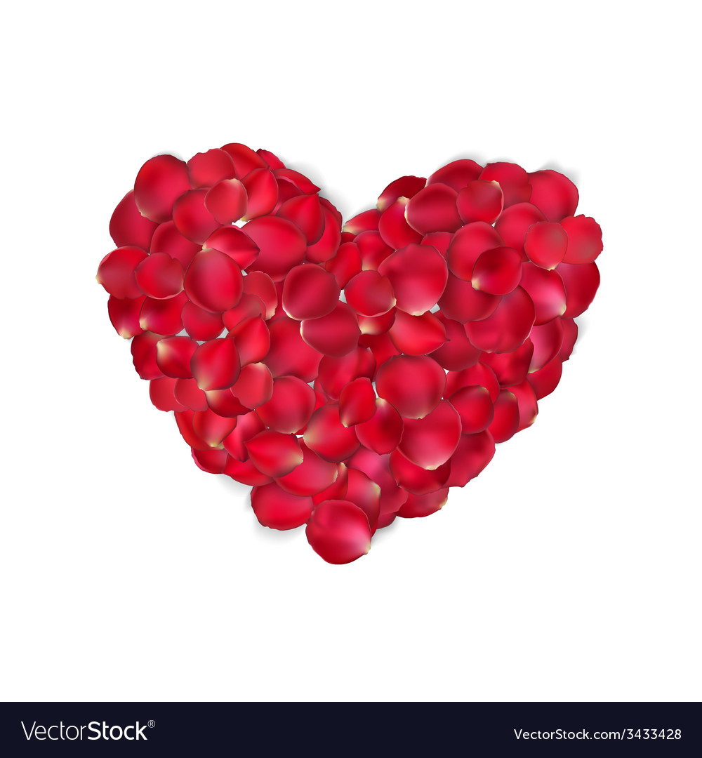 Heart of red rose petals isolated eps 10 vector | Price: 1 Credit (USD $1)