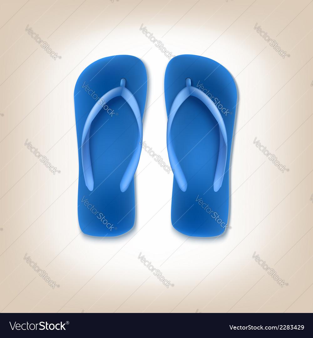 Beach slippers icon vector