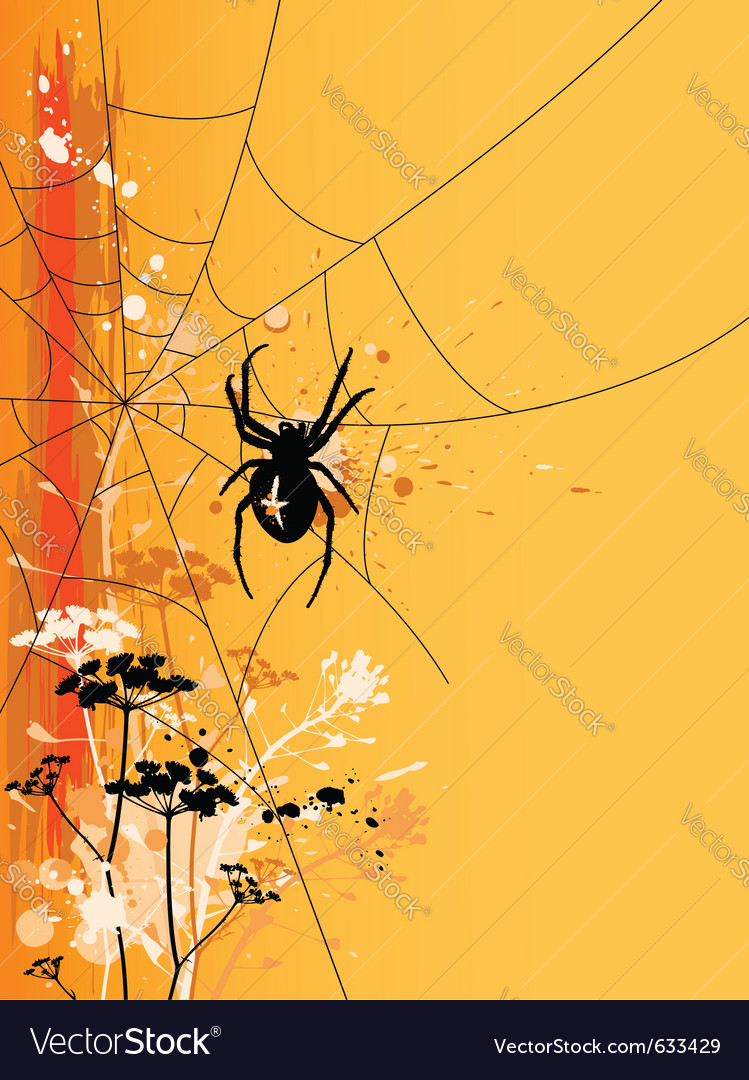 Orange halloween background with spider in web vector | Price: 1 Credit (USD $1)
