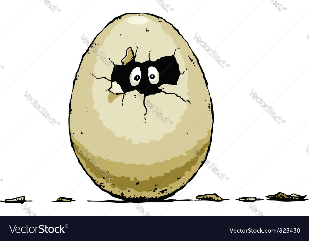 Egg hatch vector | Price: 1 Credit (USD $1)