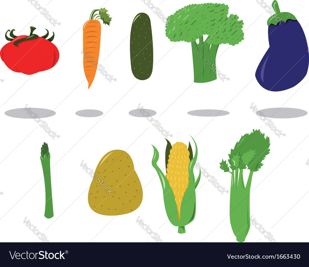 Group of vegetables vector | Price: 1 Credit (USD $1)