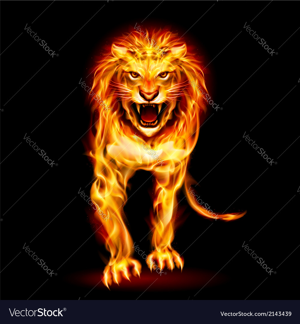 Fire lion vector | Price: 1 Credit (USD $1)