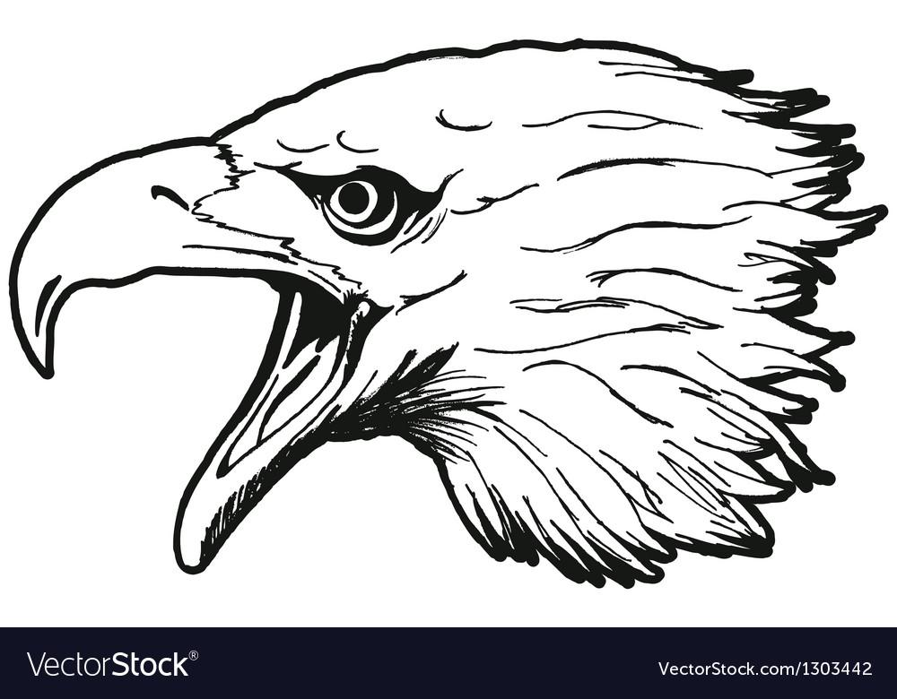 Eagle head vector | Price: 1 Credit (USD $1)