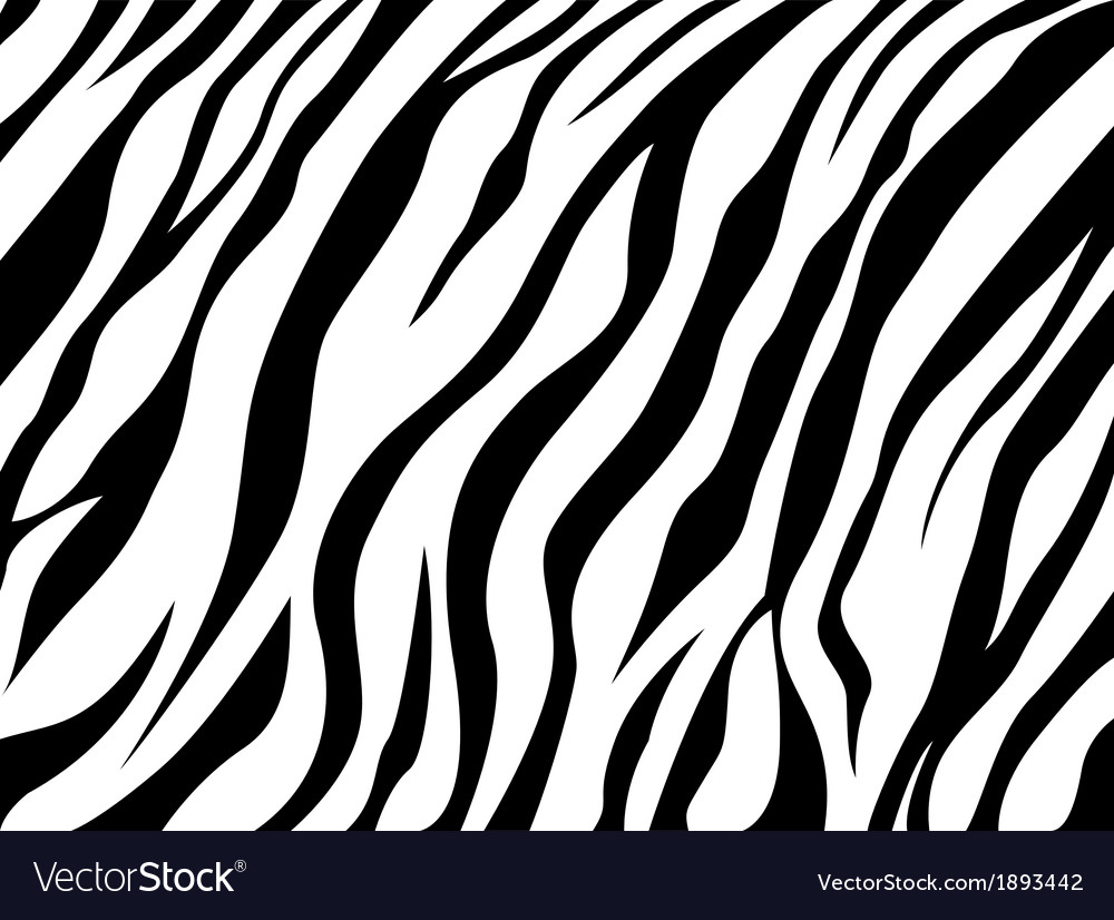 Skin zebra vector | Price: 1 Credit (USD $1)