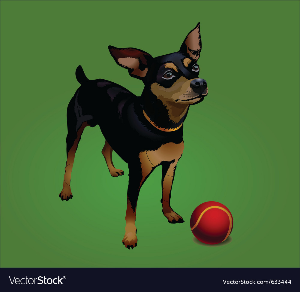 Small dog with red ball vector | Price: 1 Credit (USD $1)