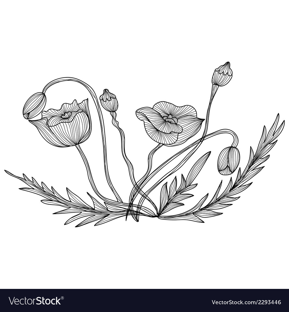 Decorative poppies vector | Price: 1 Credit (USD $1)