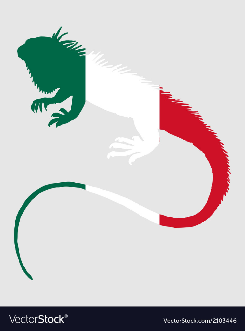 Iguana mexico vector | Price: 1 Credit (USD $1)