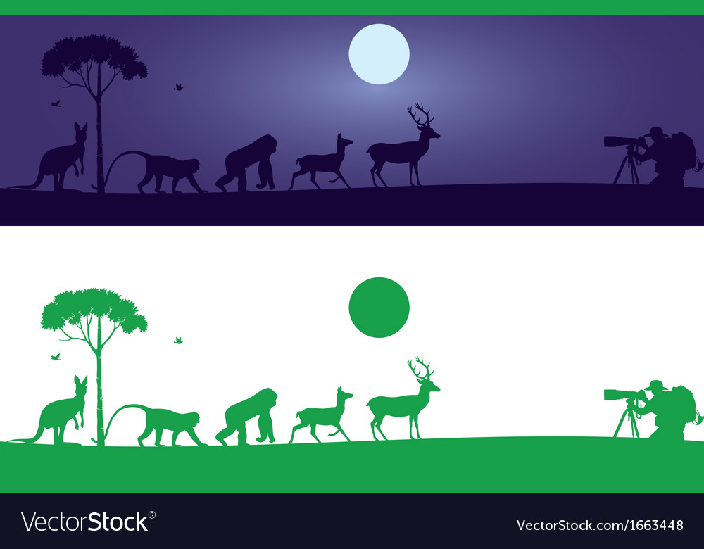 Animals wall decal vector | Price: 1 Credit (USD $1)