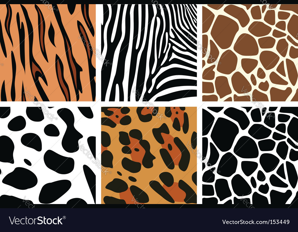Animal skin textures vector | Price: 1 Credit (USD $1)
