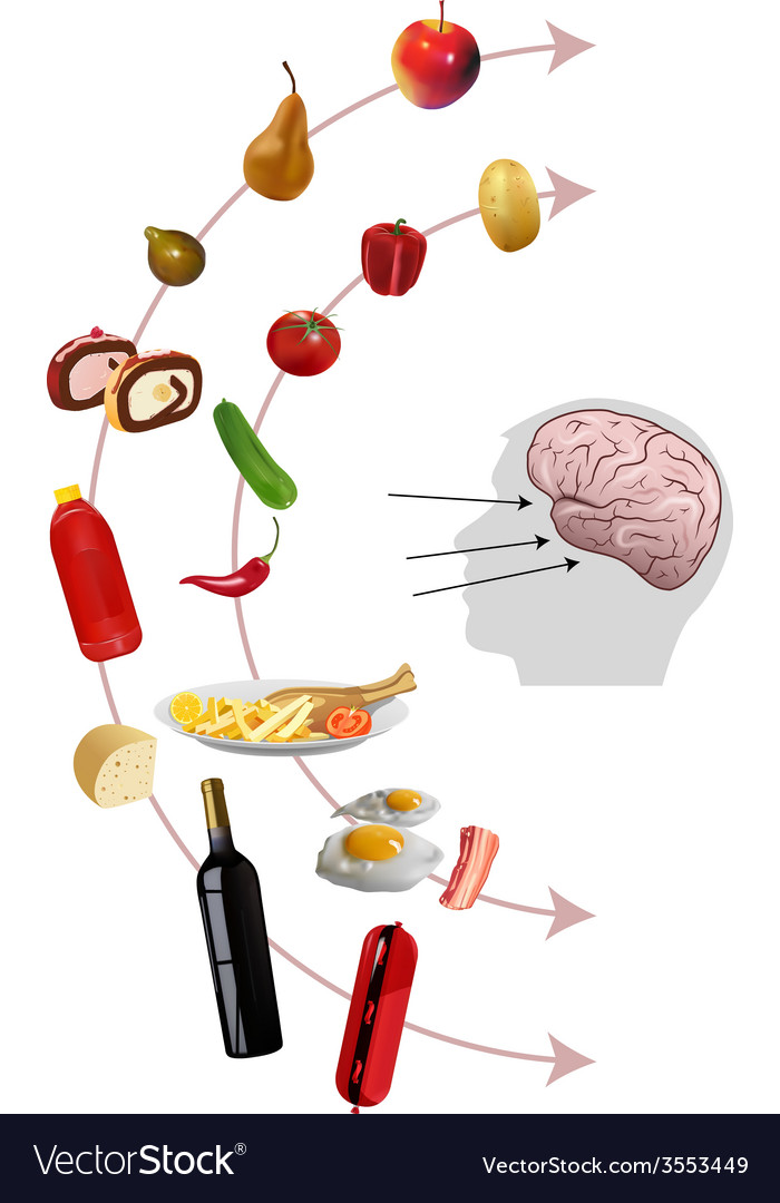 Neurogastronomy vector | Price: 1 Credit (USD $1)