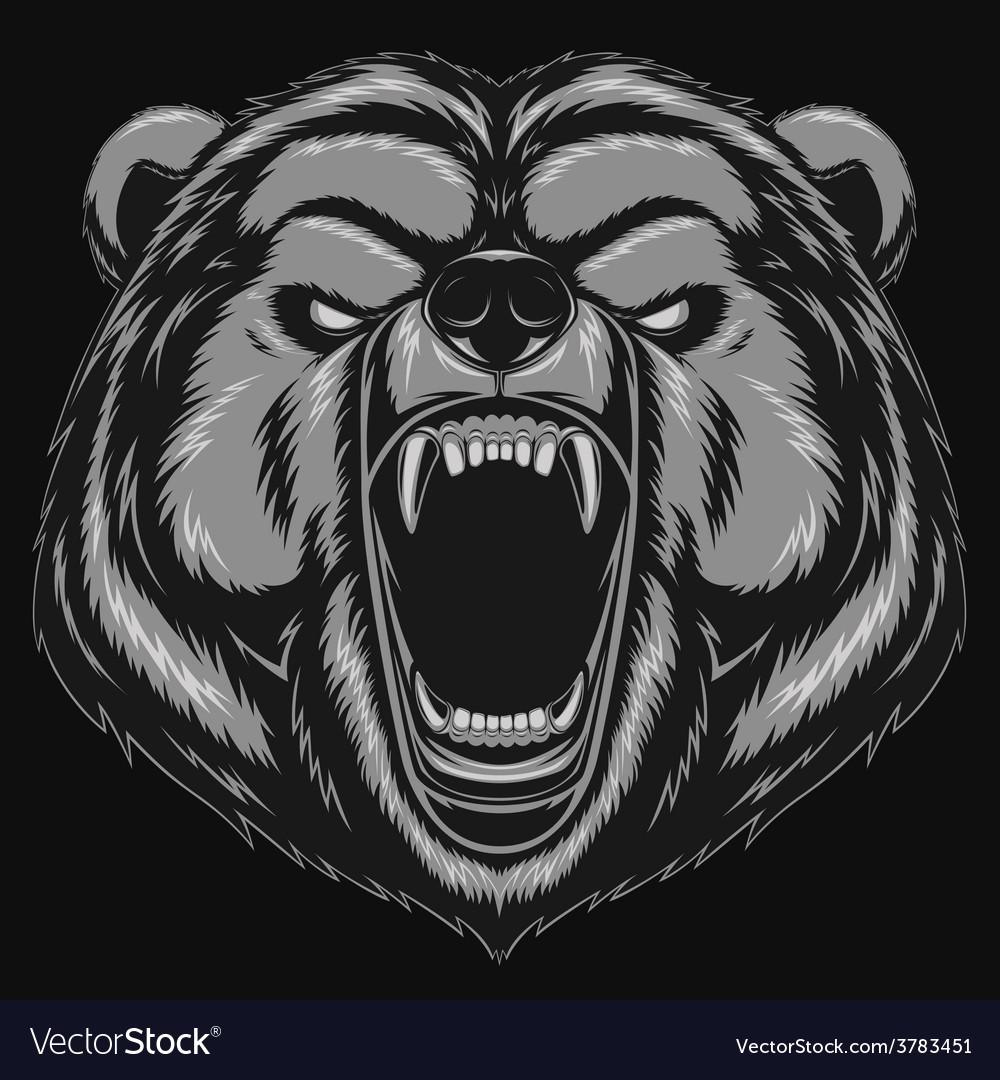 Angry bear head mascot vector | Price: 3 Credit (USD $3)