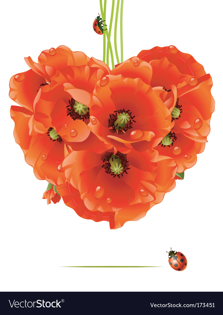 Floral love card poppy heart vector | Price: 3 Credit (USD $3)