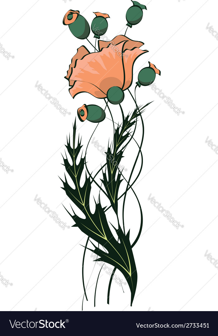 Poppy floral pattern vector | Price: 1 Credit (USD $1)