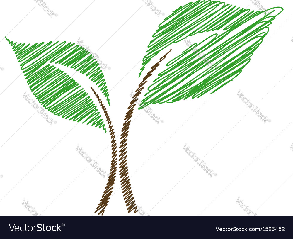 Seedling sketched vector | Price: 1 Credit (USD $1)