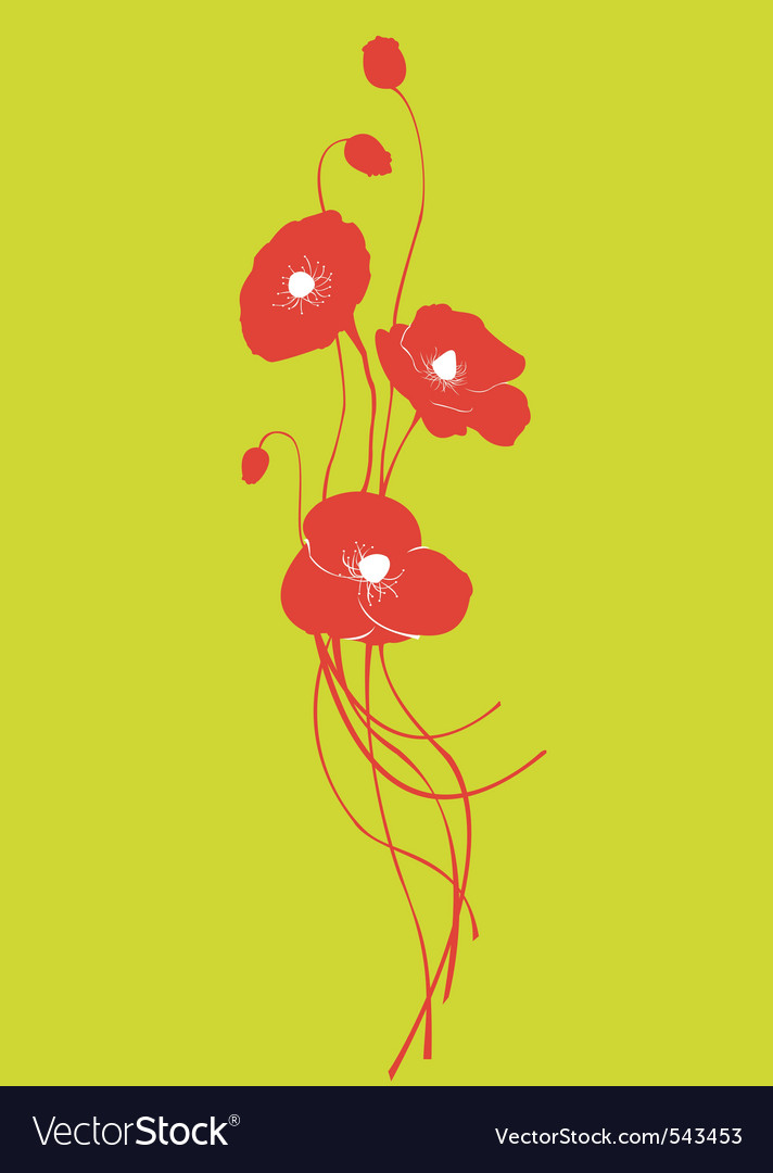 Poppy floral vector | Price: 1 Credit (USD $1)