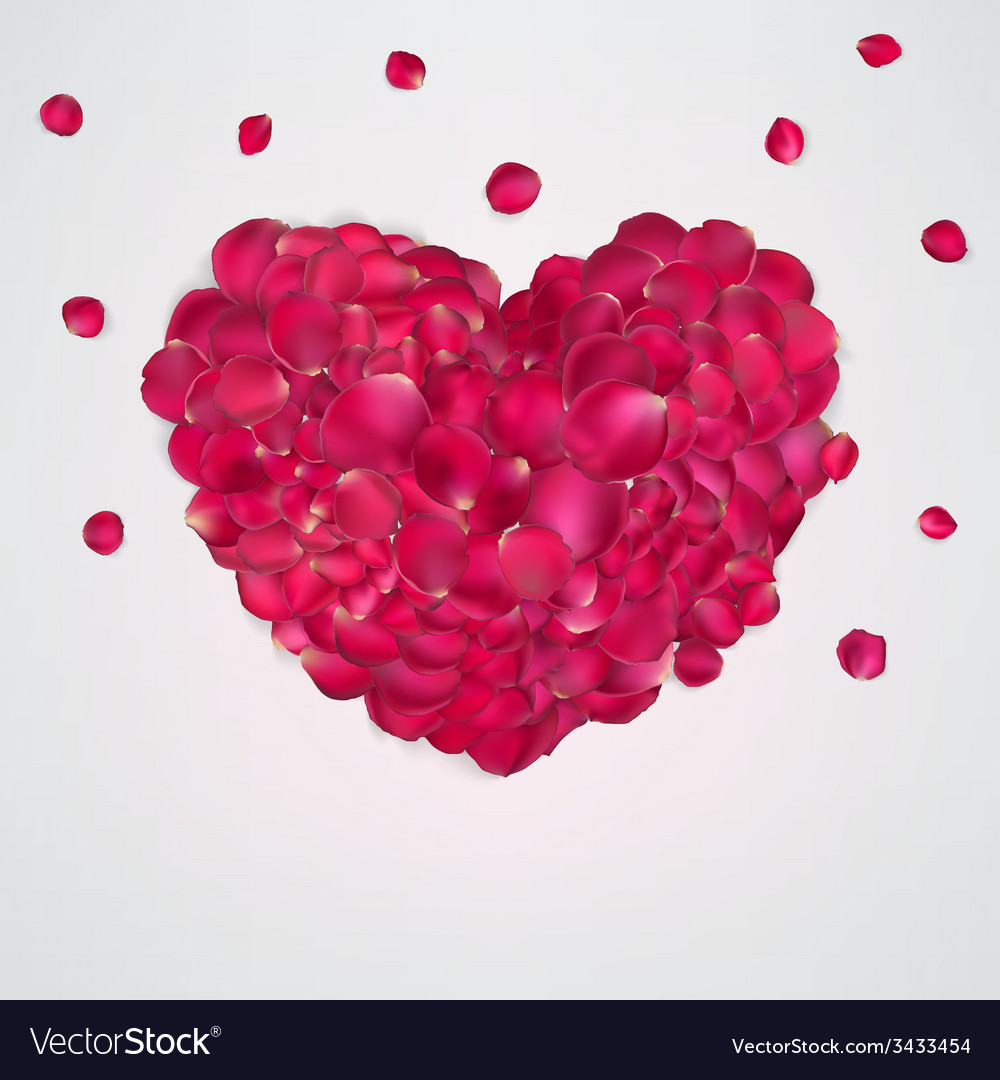 Heart of red rose petals eps 10 vector | Price: 1 Credit (USD $1)