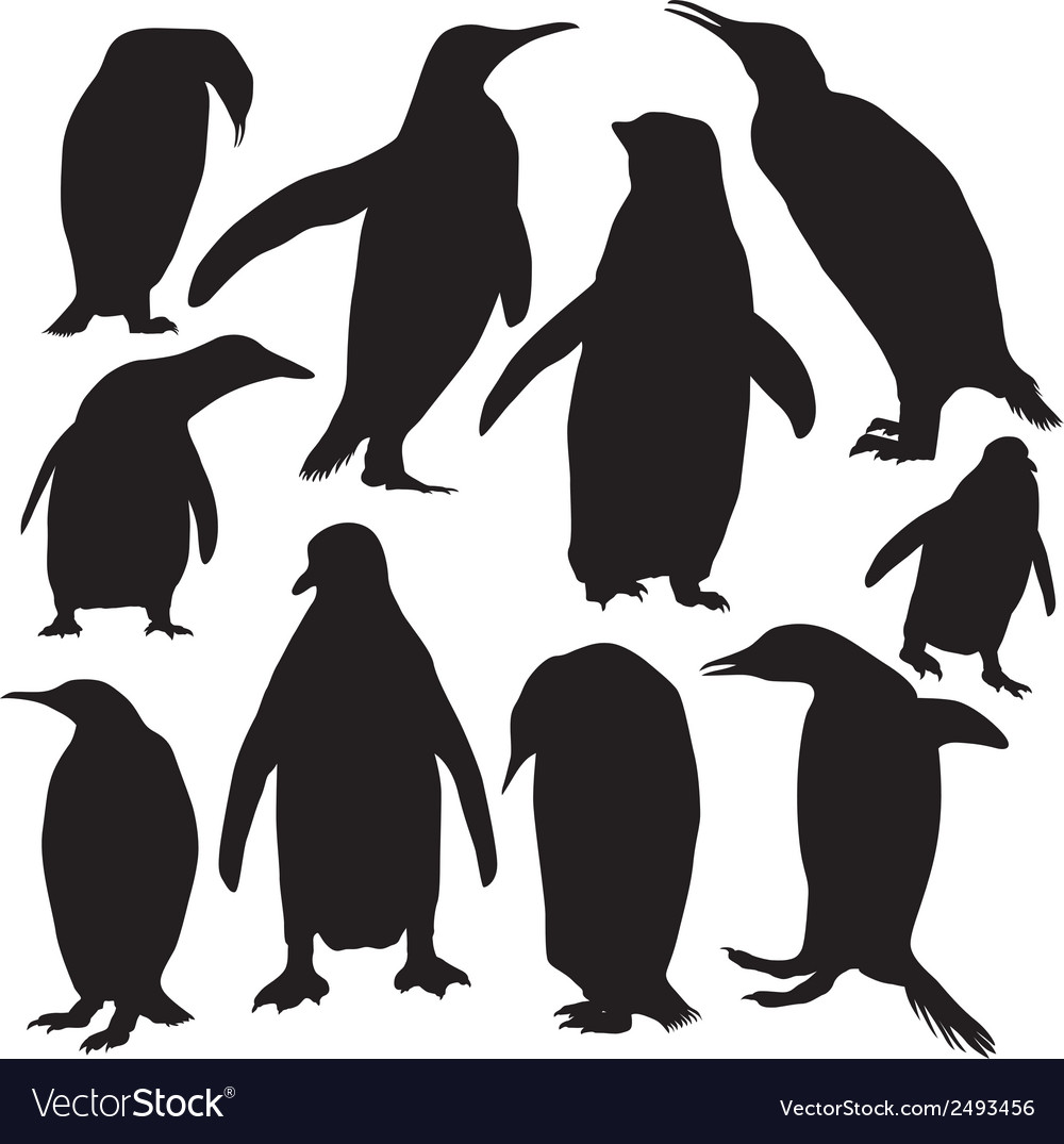 Penguins silhouette vector | Price: 1 Credit (USD $1)