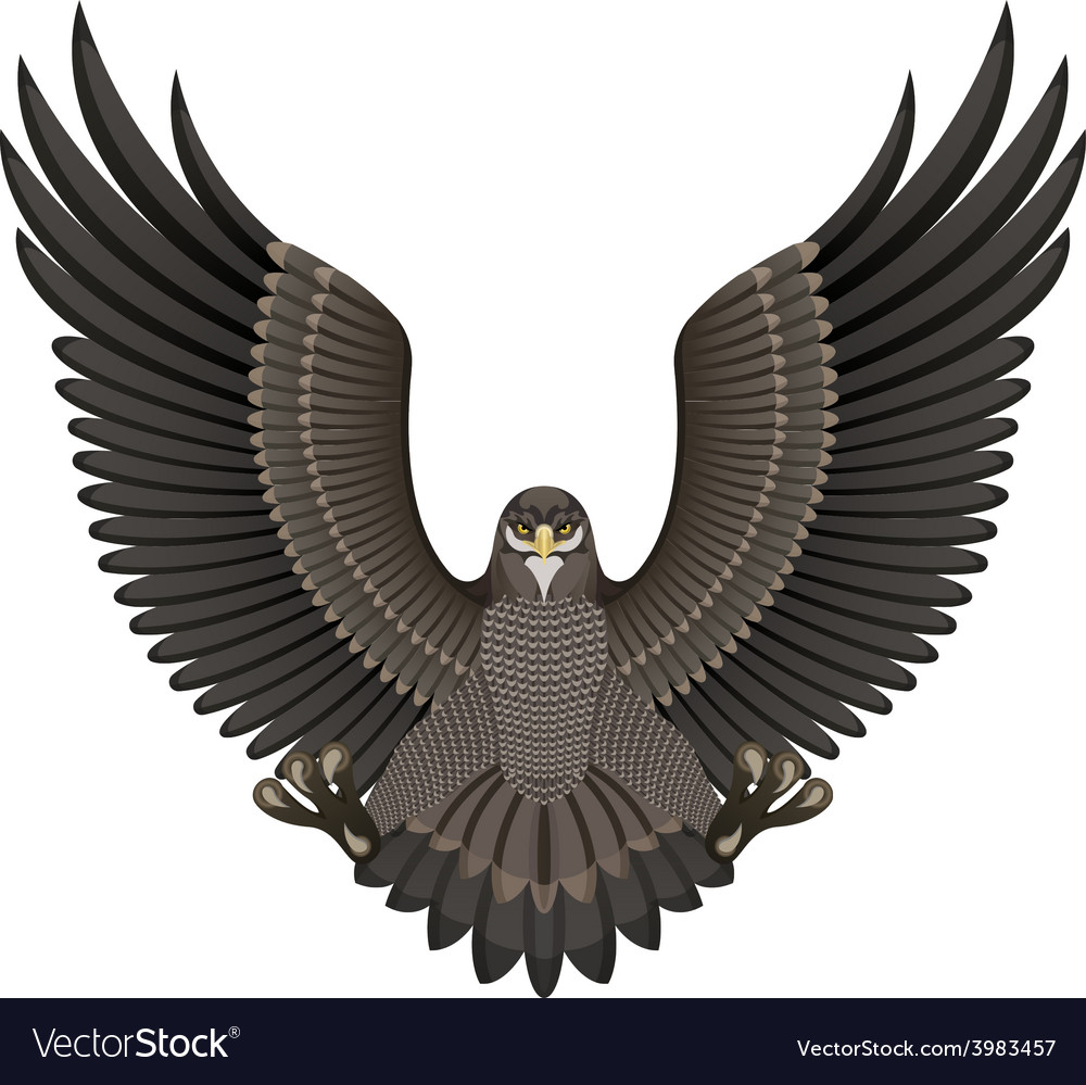 Eagle on a white background vector   Price: 1 Credit (USD $1)