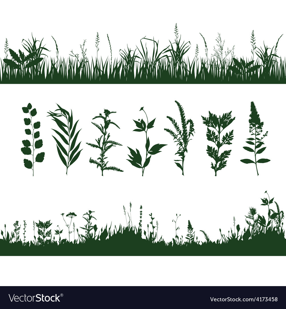 Silhouettes grass vector | Price: 1 Credit (USD $1)