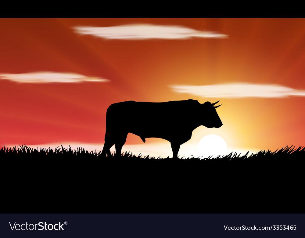 Bull in the field vector | Price: 1 Credit (USD $1)