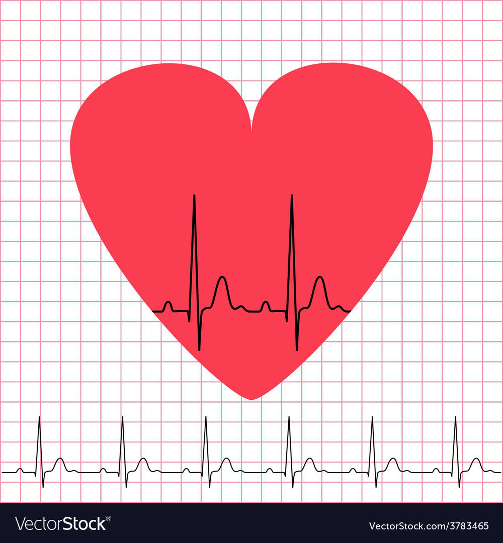 Heart icon with electrocardiogram on grid vector | Price: 1 Credit (USD $1)