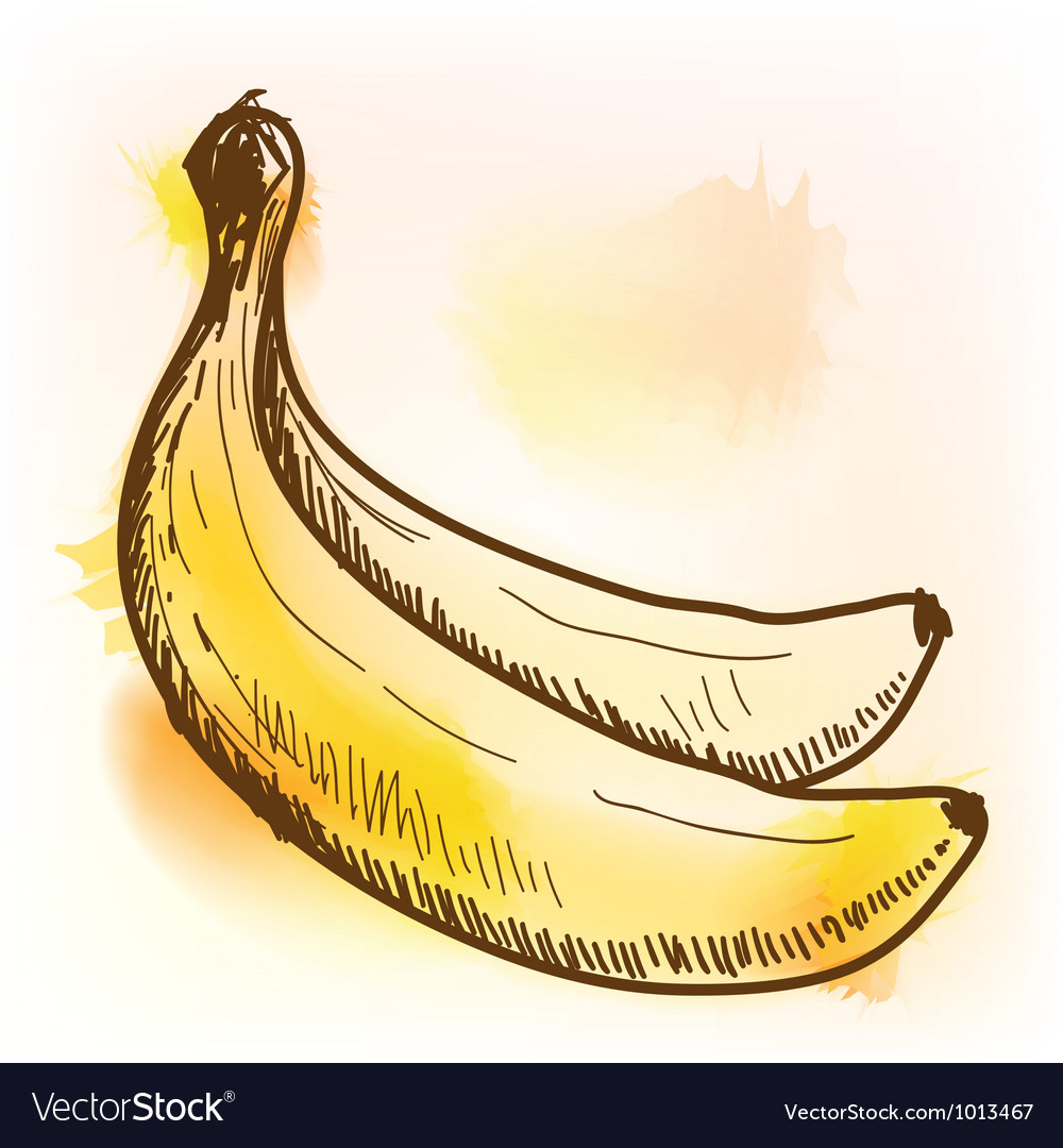 Banana watercolor painting vector | Price: 1 Credit (USD $1)