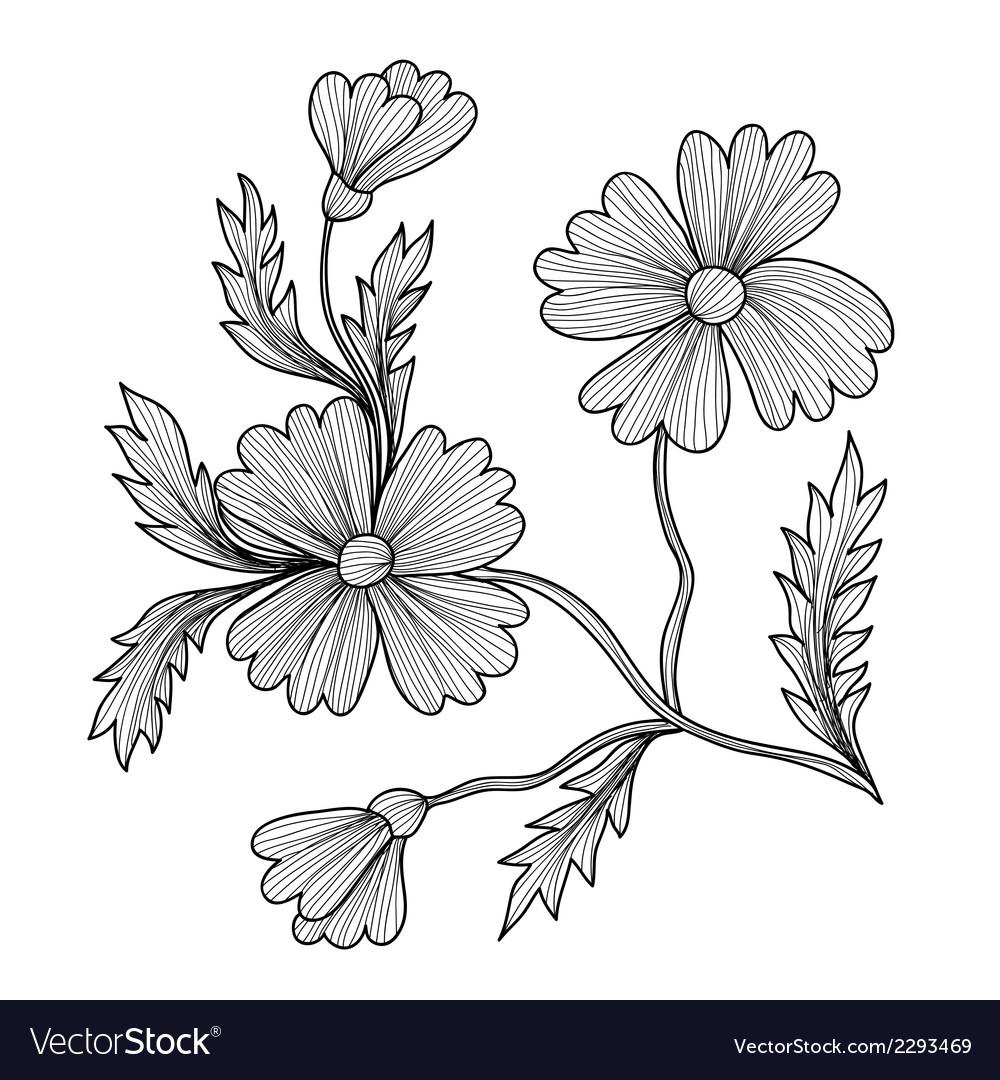 Decorative cornflower vector | Price: 1 Credit (USD $1)