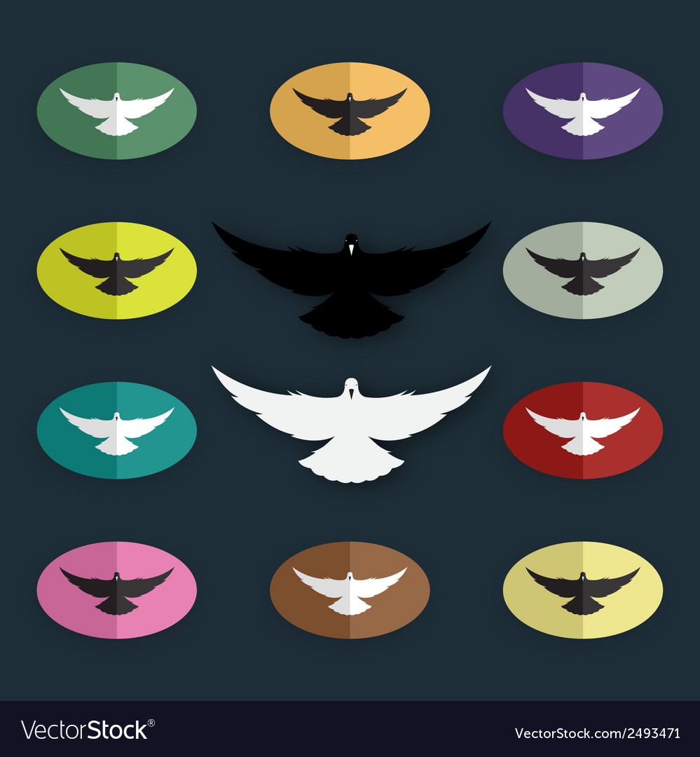 Group of bird pigeon vector | Price: 1 Credit (USD $1)