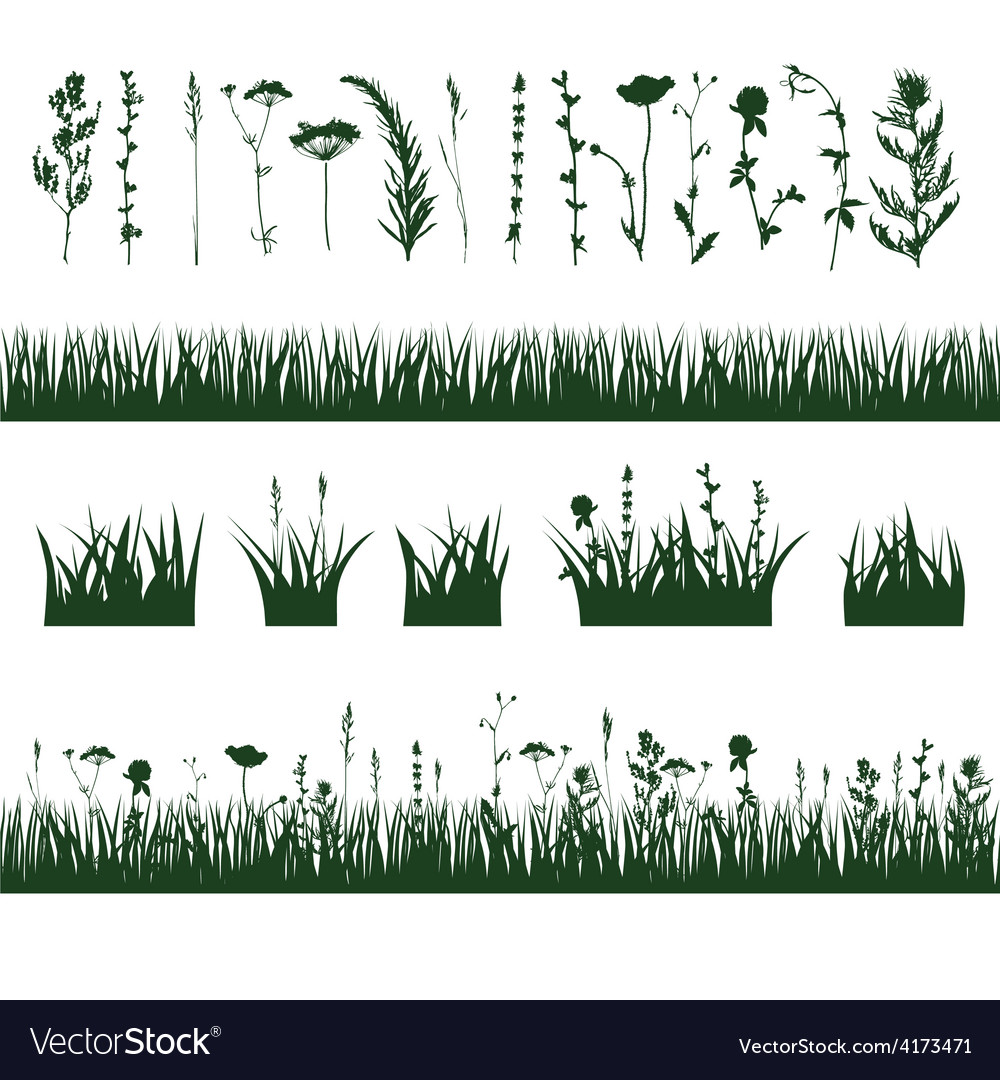 Silhouettes meadow grass vector | Price: 1 Credit (USD $1)