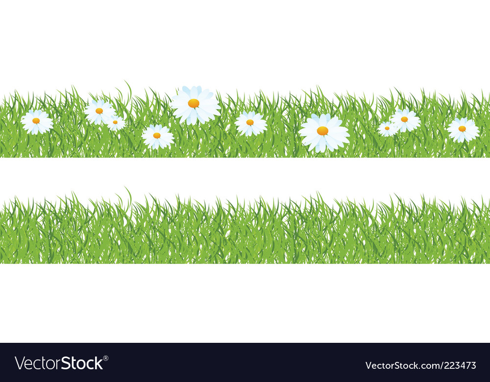 Grass and chamomiles vector   Price: 1 Credit (USD $1)