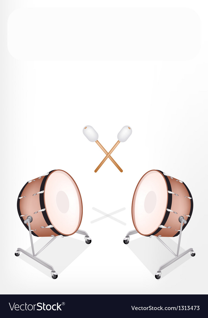 Two beautiful classical bass drum vector | Price: 1 Credit (USD $1)
