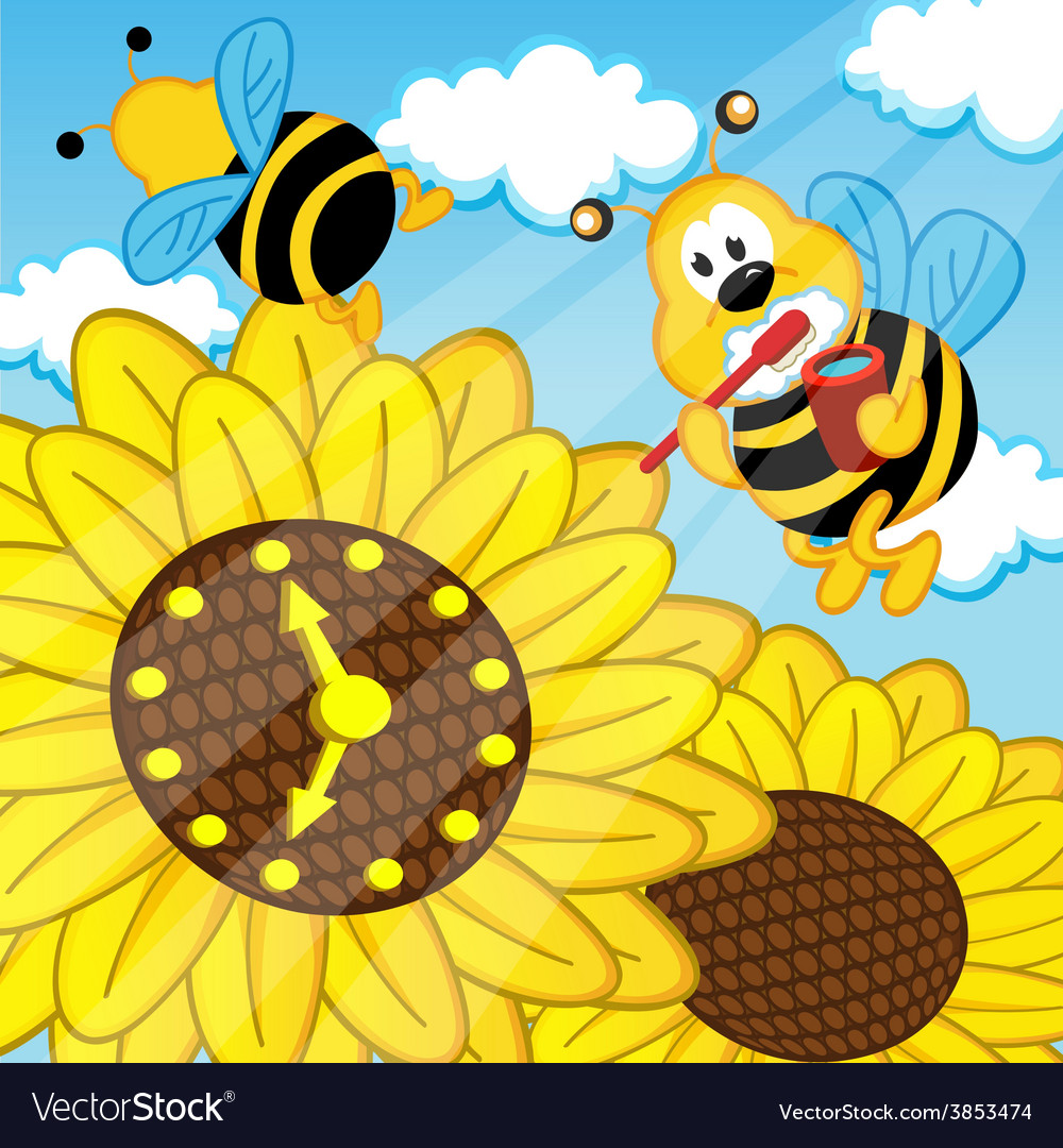 Bee brushes teeth looks at watch sunflower vector | Price: 1 Credit (USD $1)
