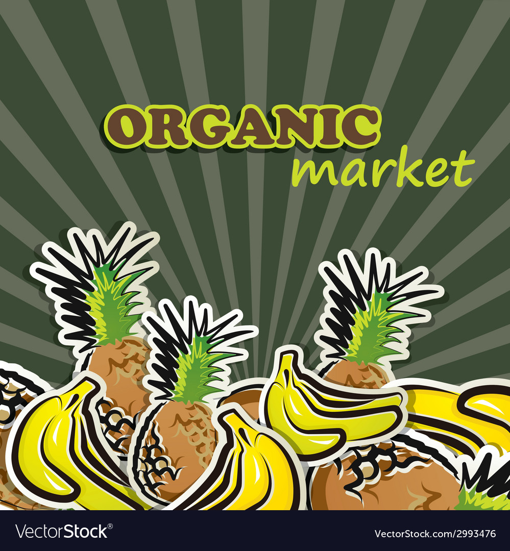 Fruit organic food concept vector | Price: 1 Credit (USD $1)