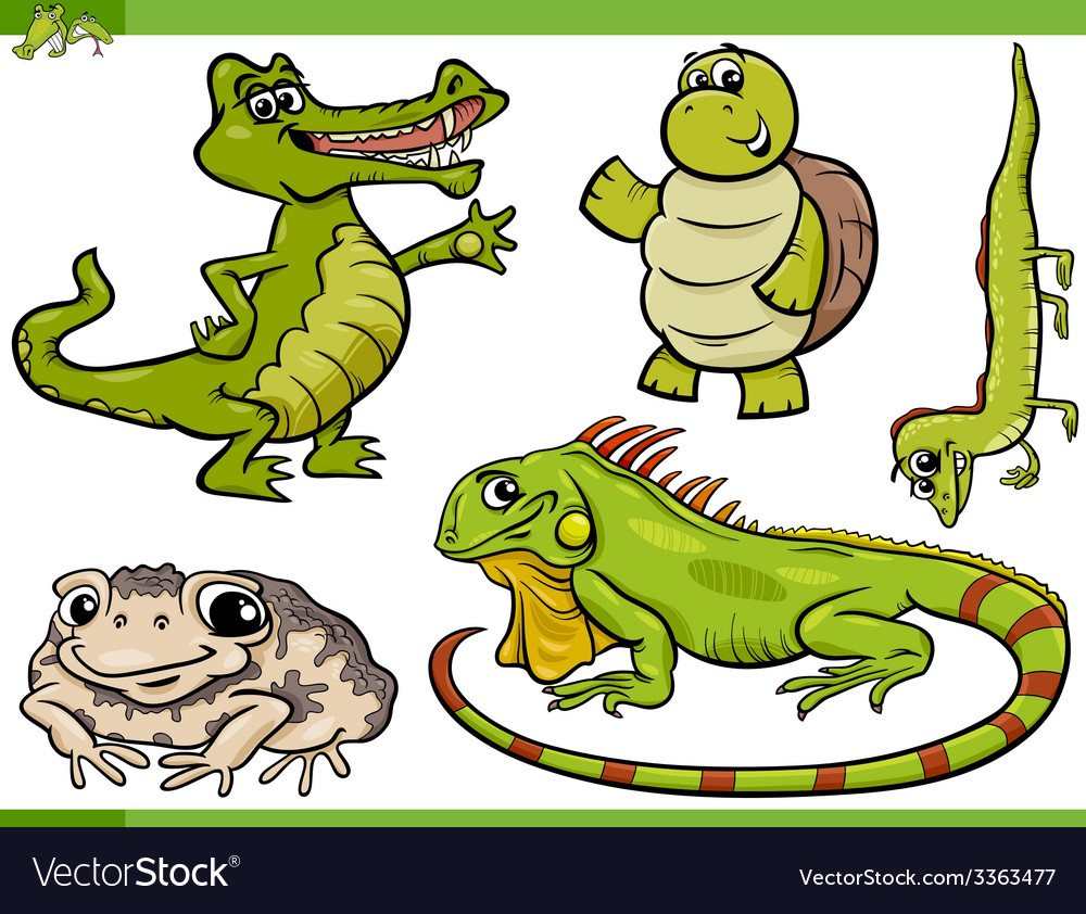 Reptiles and amphibians cartoon set vector | Price: 3 Credit (USD $3)