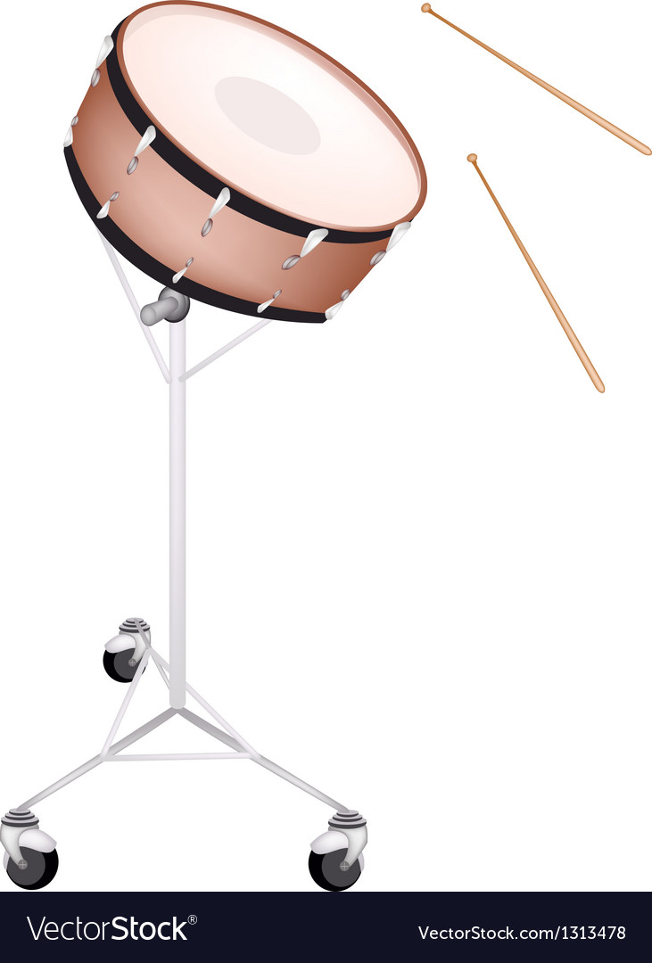 A beautiful snare drum on white background vector | Price: 1 Credit (USD $1)