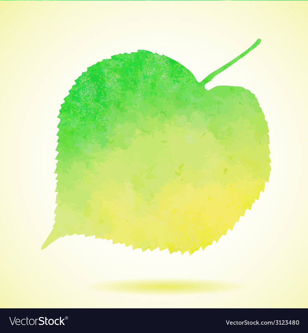 Watercolor linden leaf isolated on white vector   Price: 1 Credit (USD $1)