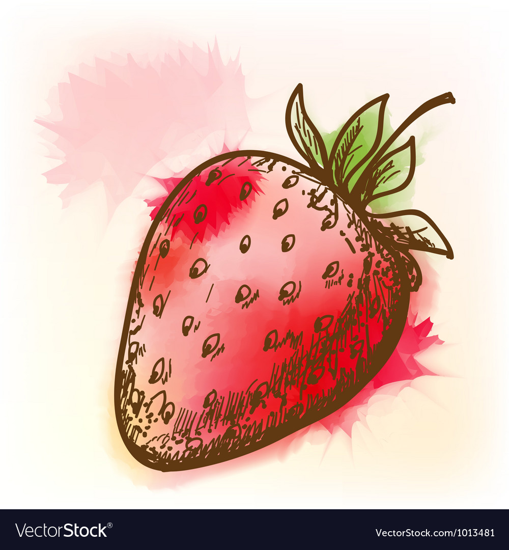 Strawberry watercolor painting vector | Price: 1 Credit (USD $1)