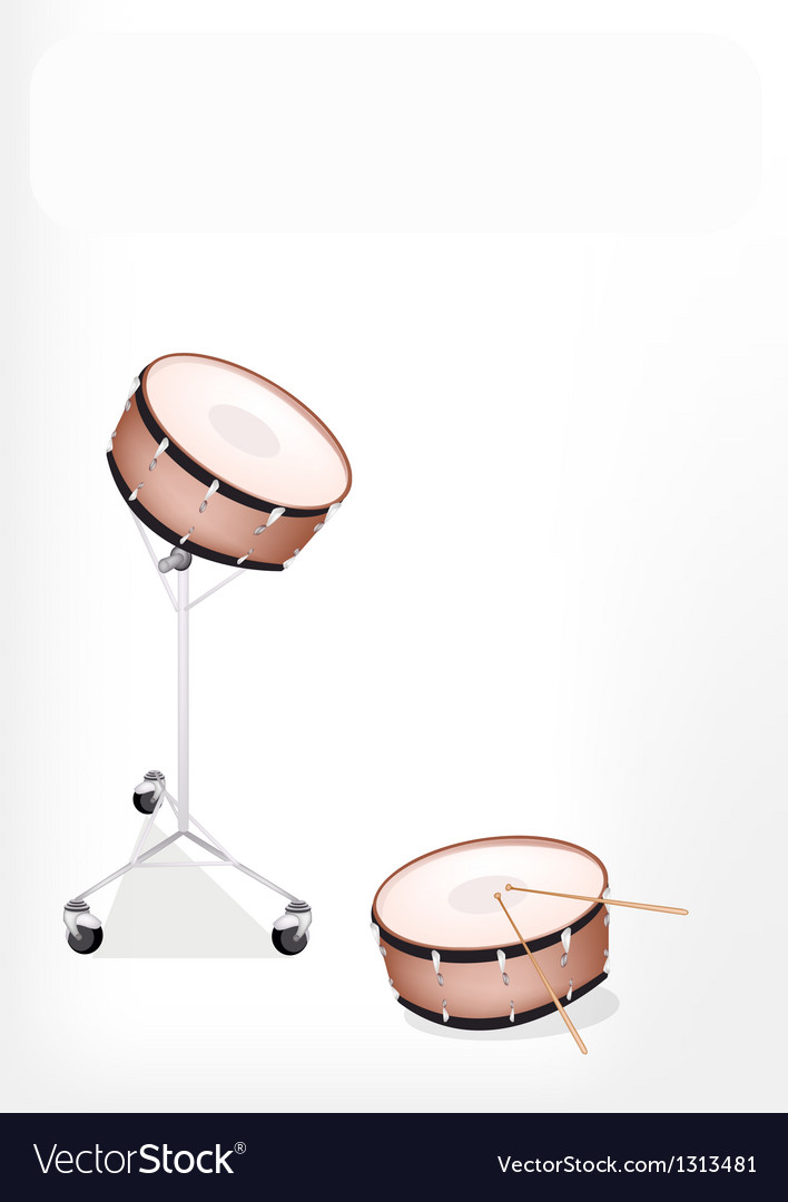 Two beautiful snare drum on white background vector   Price: 1 Credit (USD $1)