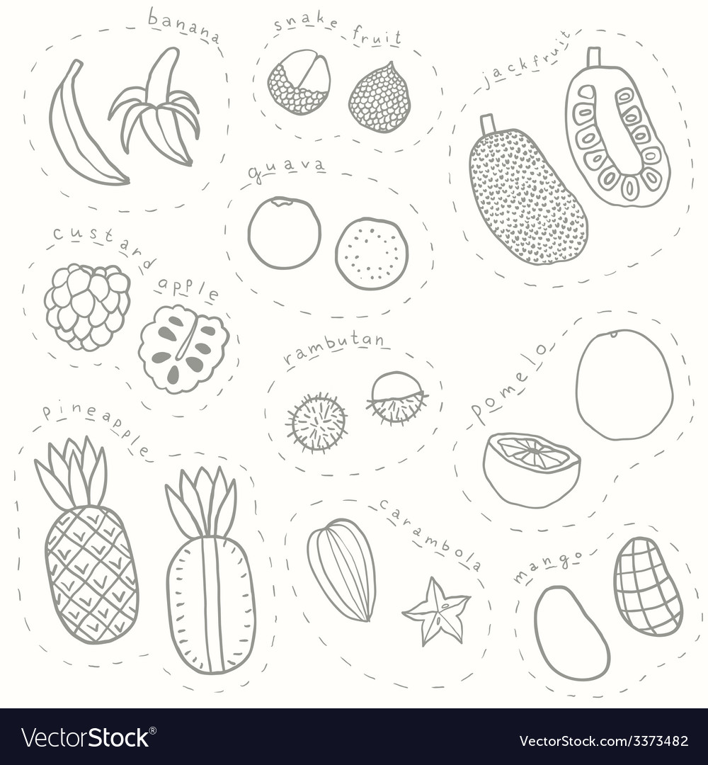 Set of hand drawn sketch tropical fruits part 1 vector | Price: 1 Credit (USD $1)