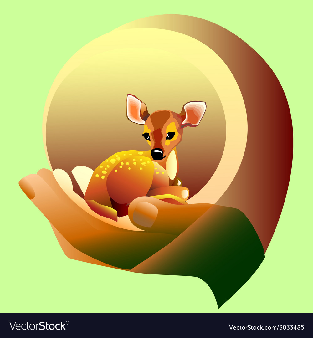 Deer spotted vector | Price: 1 Credit (USD $1)