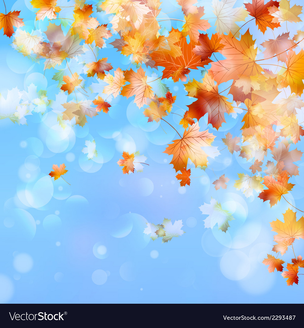Abstract autumn background eps 10 vector | Price: 1 Credit (USD $1)