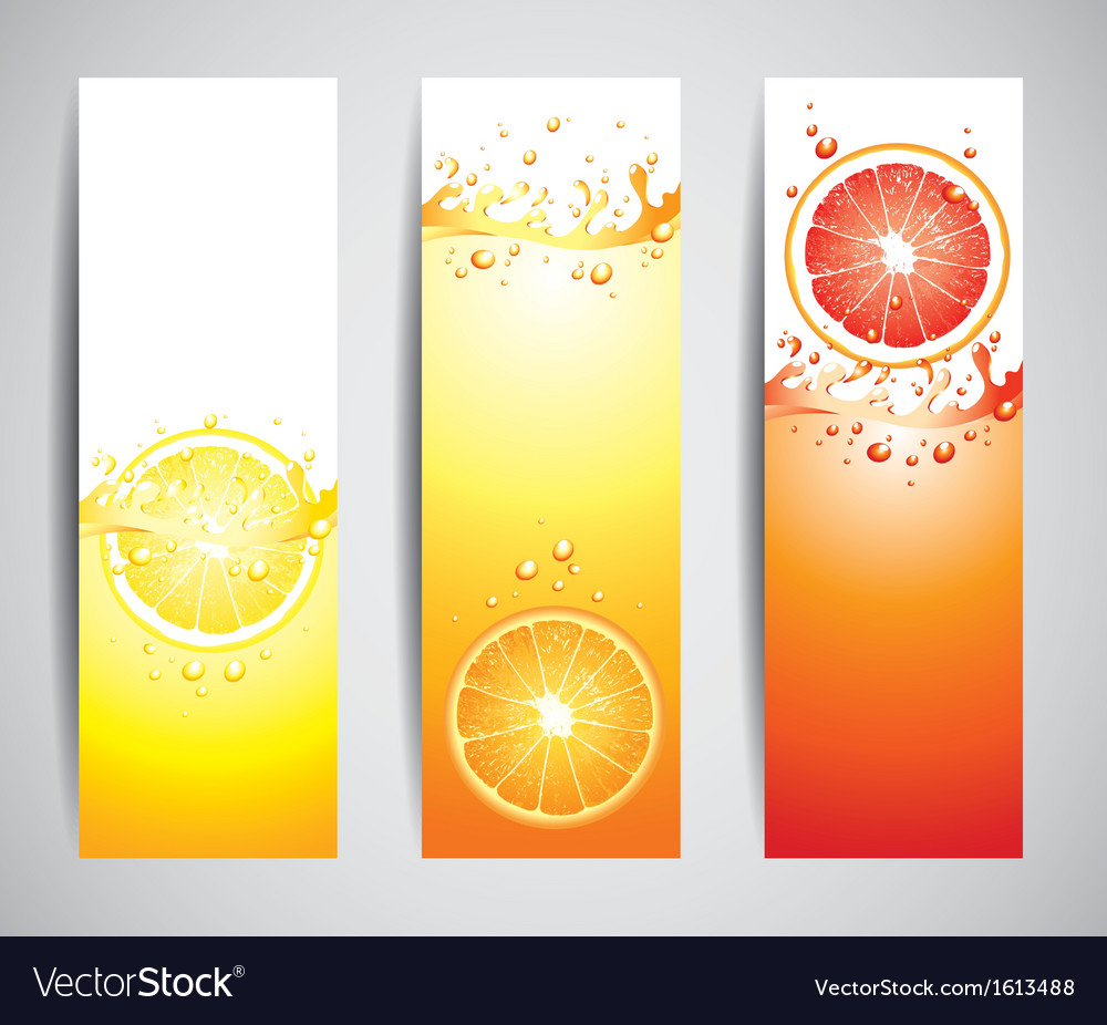 Citrus banners vector | Price: 1 Credit (USD $1)