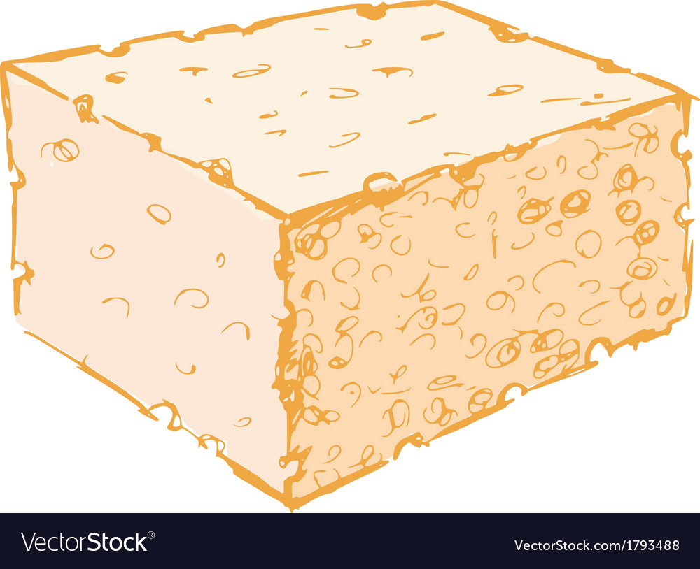 Sponge vector | Price: 1 Credit (USD $1)