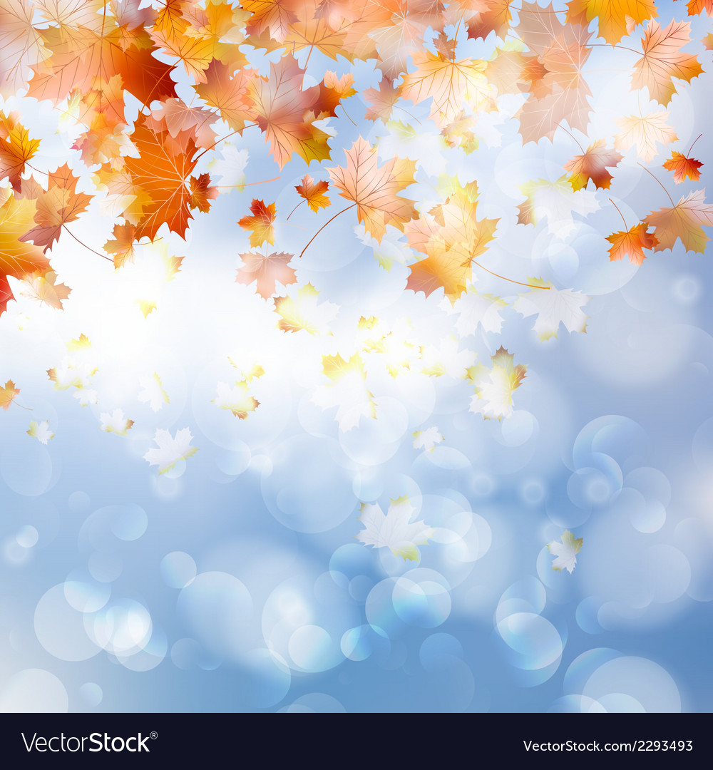 Autumn abstract background eps 10 vector | Price: 1 Credit (USD $1)