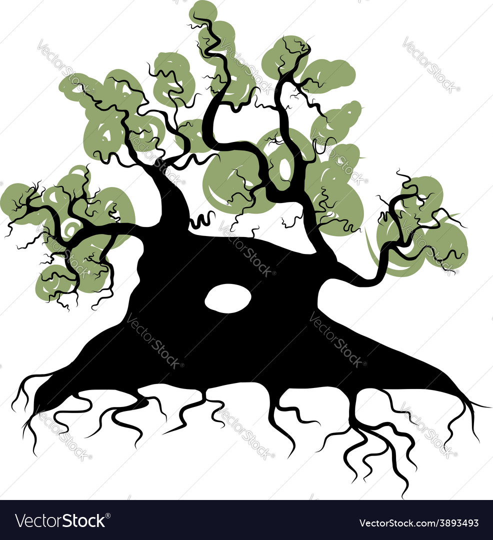 Big old tree with roots for your design vector