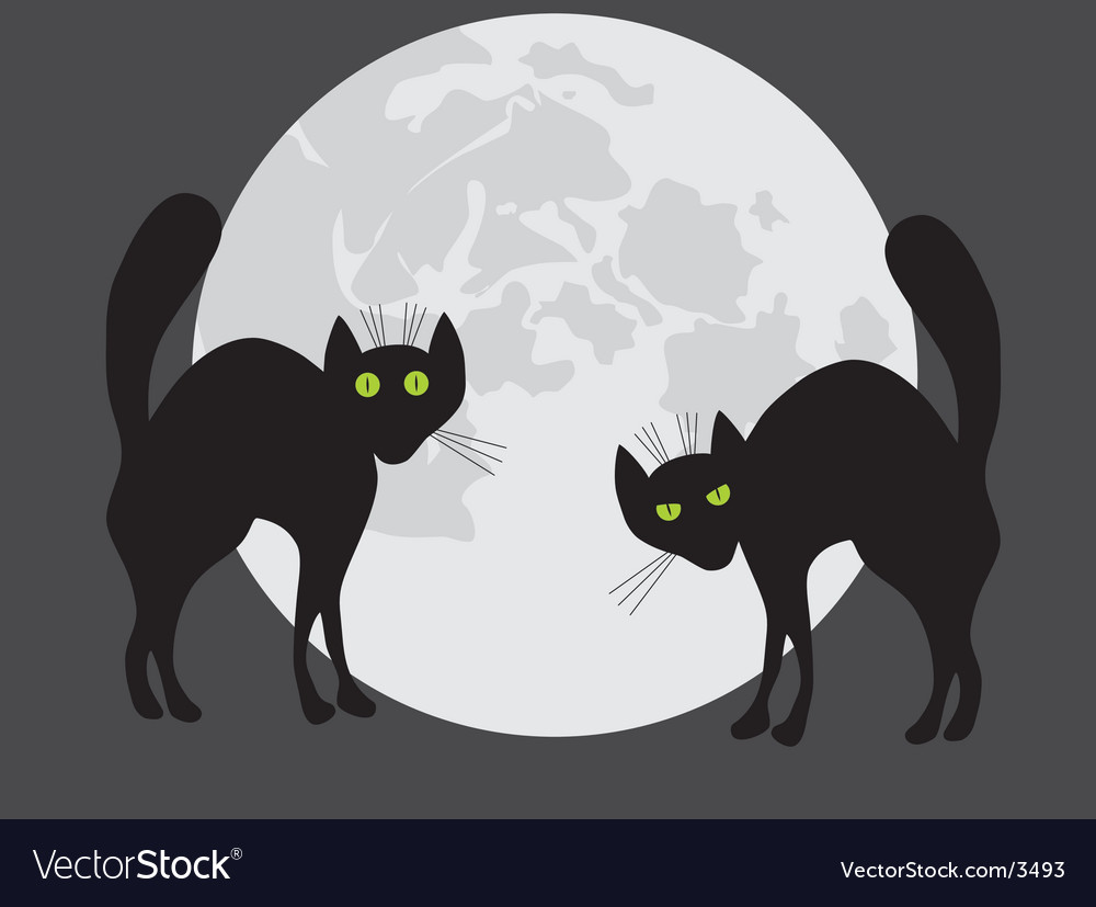 Two black cats vector | Price: 1 Credit (USD $1)