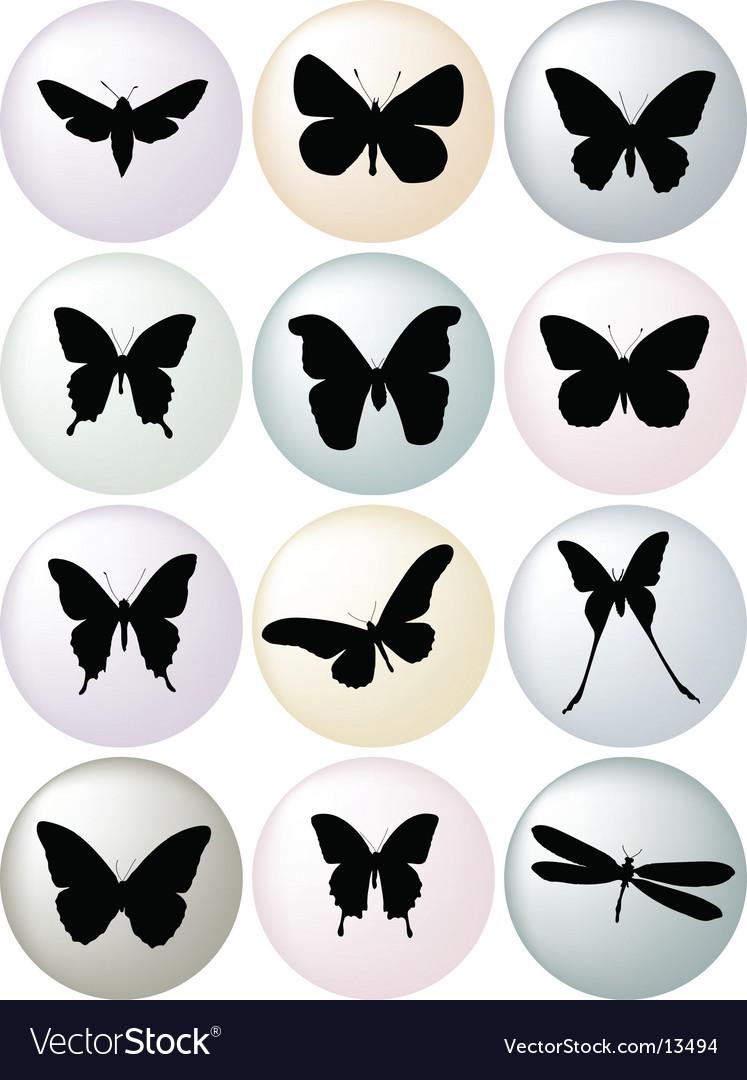 Butterflies vector   Price: 1 Credit (USD $1)